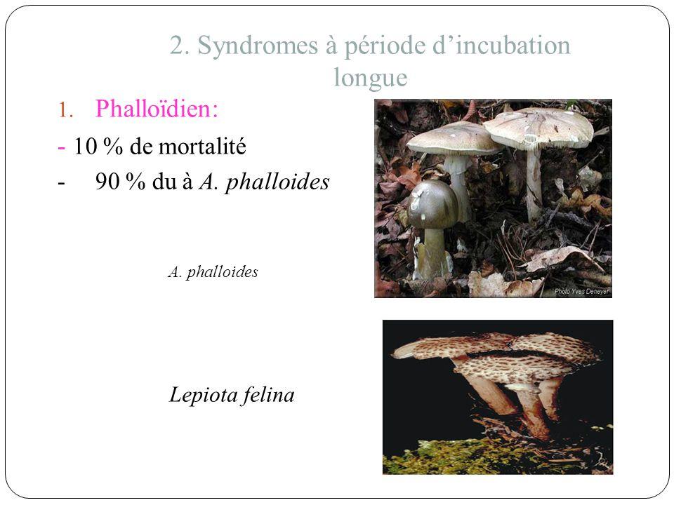 2. Syndromes à période d'incubation longue