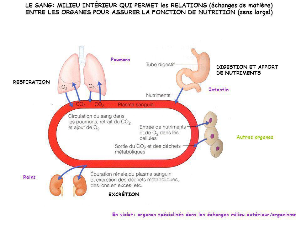 ENTRE LES ORGANES POUR ASSURER LA FONCTION DE NUTRITION (sens large!)