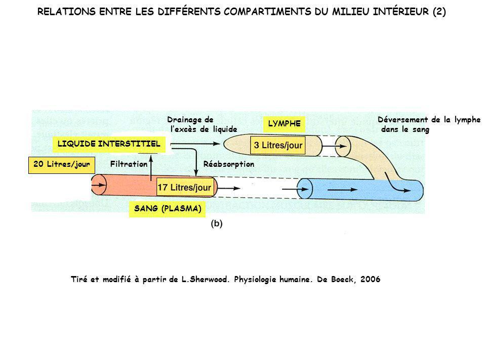 RELATIONS ENTRE LES DIFFÉRENTS COMPARTIMENTS DU MILIEU INTÉRIEUR (2)