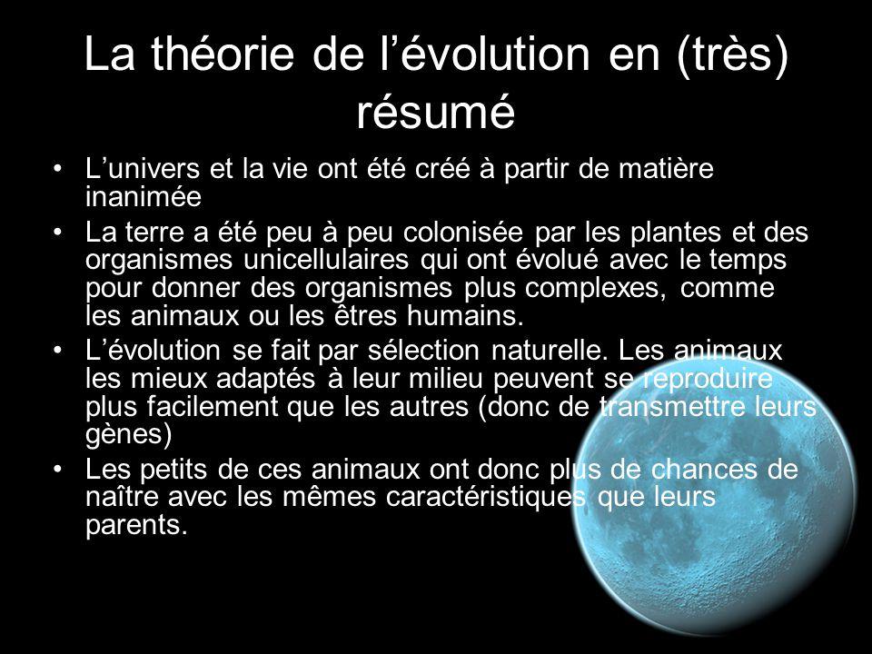 La théorie de l'évolution en (très) résumé