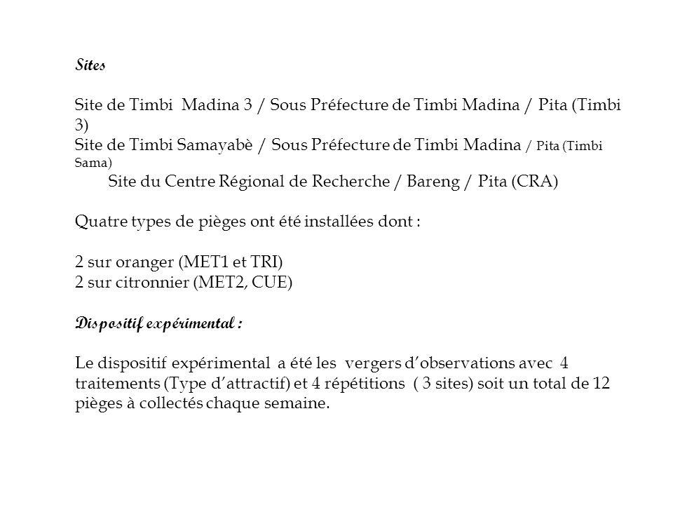 Sites Site de Timbi Madina 3 / Sous Préfecture de Timbi Madina / Pita (Timbi 3)