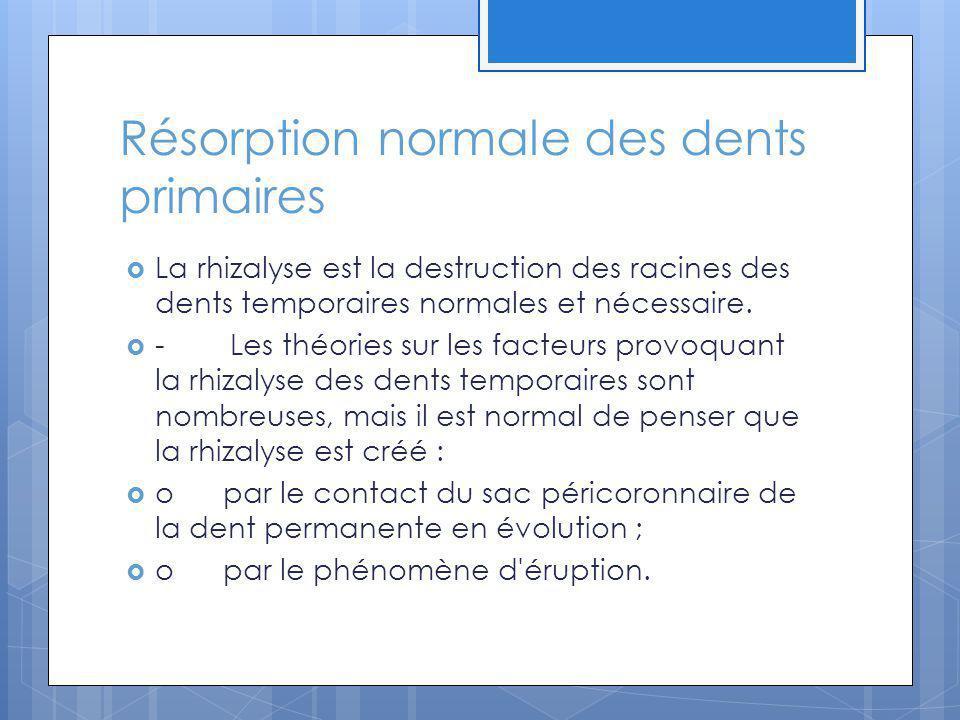 Résorption normale des dents primaires