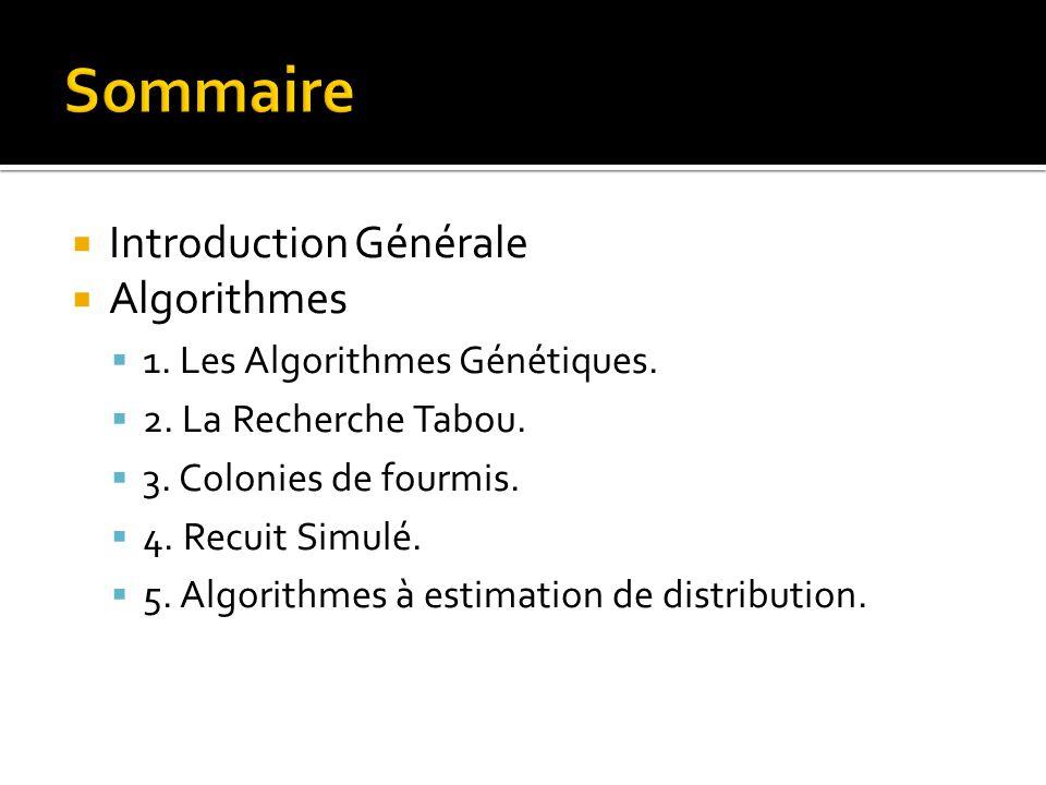Sommaire Introduction Générale Algorithmes