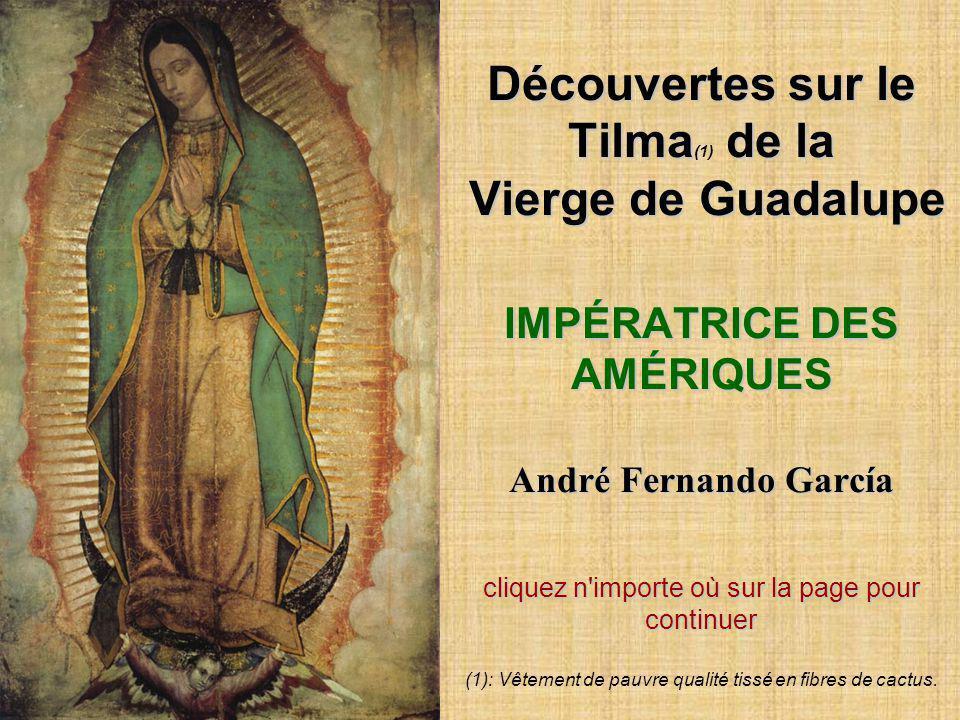 Découvertes sur le Tilma(1) de la Vierge de Guadalupe IMPÉRATRICE DES AMÉRIQUES André Fernando García cliquez n importe où sur la page pour continuer (1): Vêtement de pauvre qualité tissé en fibres de cactus.