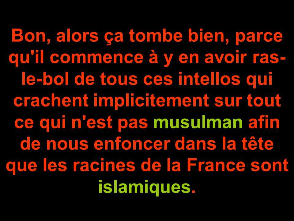 Bon, alors ça tombe bien, parce qu il commence à y en avoir ras-le-bol de tous ces intellos qui crachent implicitement sur tout ce qui n est pas musulman afin de nous enfoncer dans la tête que les racines de la France sont islamiques.