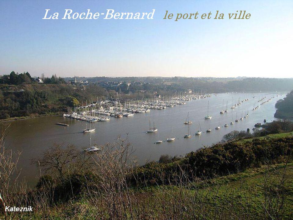 La Roche-Bernard le port et la ville