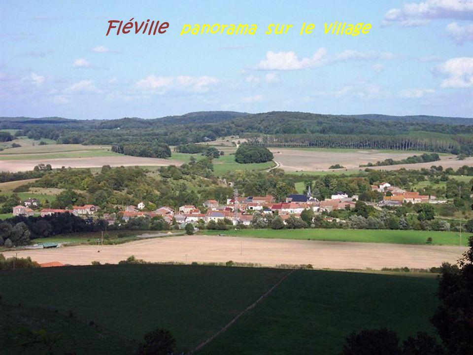 Fléville panorama sur le village