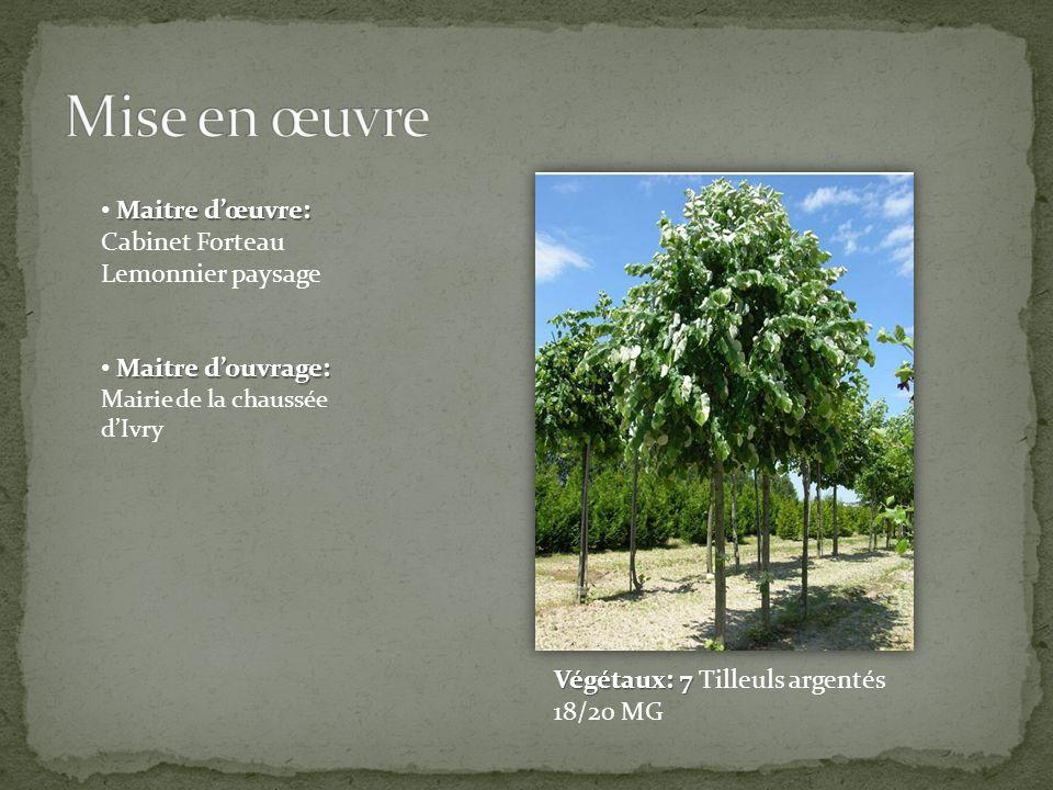 Mise en œuvre Maitre d'œuvre: Cabinet Forteau Lemonnier paysage