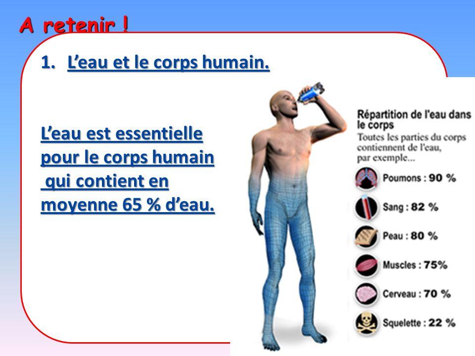 A retenir ! L'eau et le corps humain. L'eau est essentielle