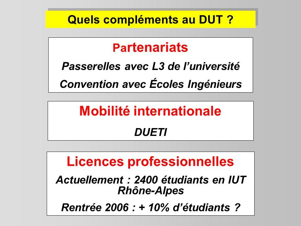 Mobilité internationale Licences professionnelles