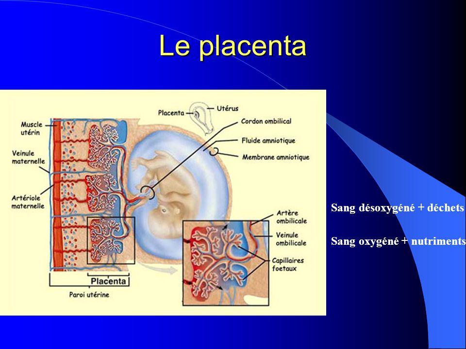 Le placenta Sang désoxygéné + déchets Sang oxygéné + nutriments