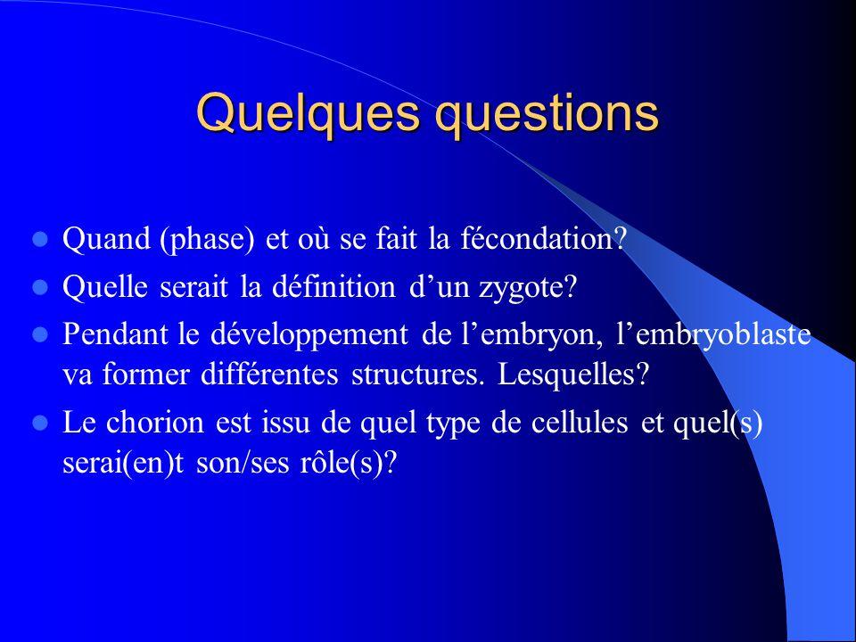 Quelques questions Quand (phase) et où se fait la fécondation