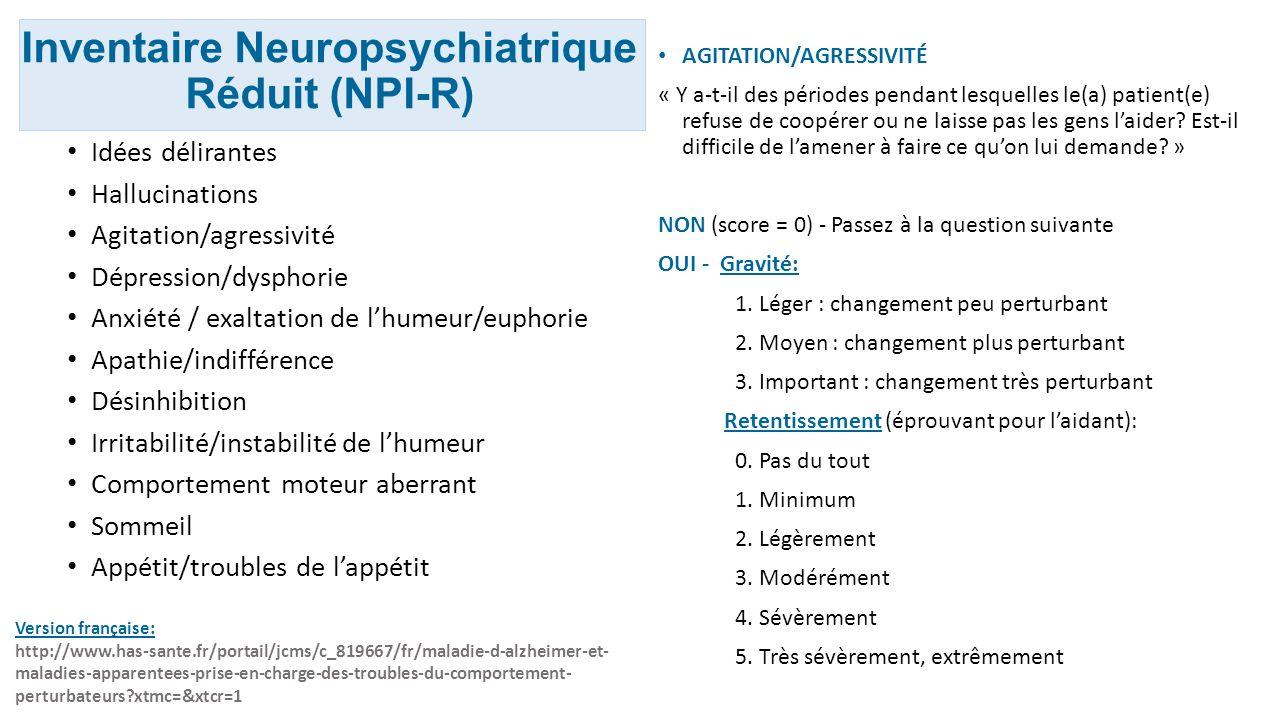 Inventaire Neuropsychiatrique Réduit (NPI-R)