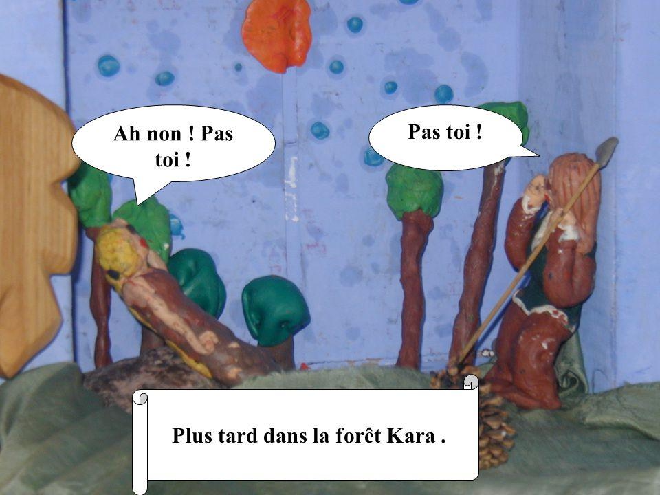 Plus tard dans la forêt Kara .