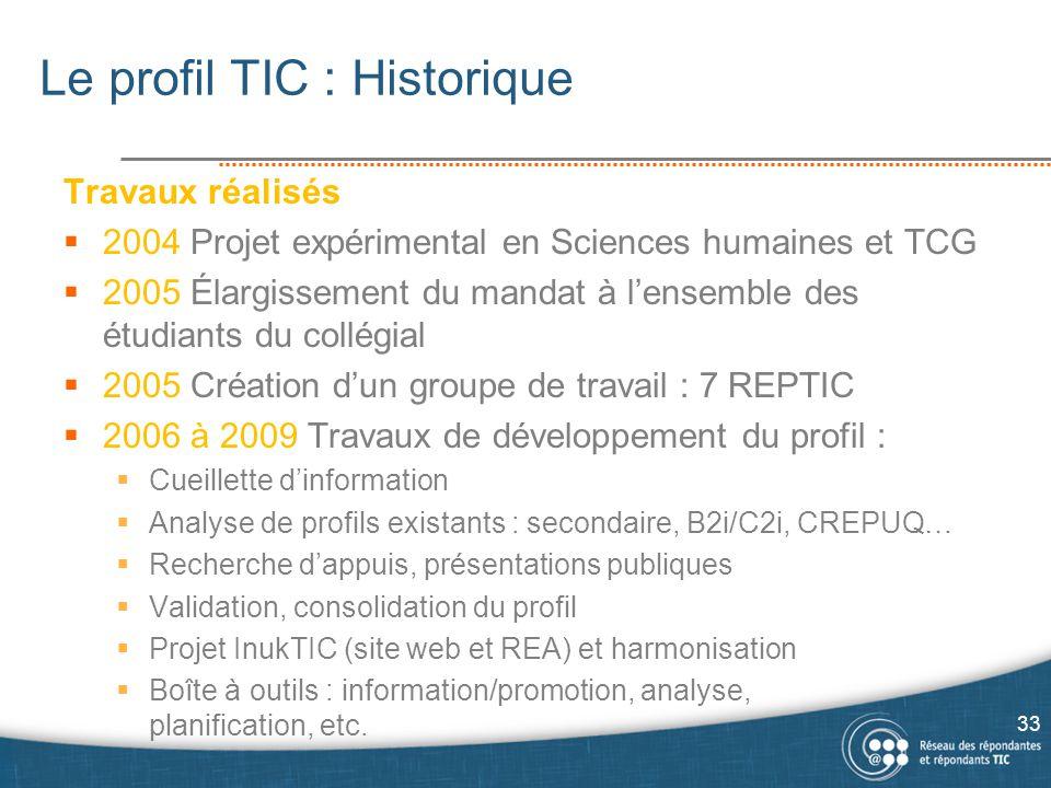 Le profil TIC : Historique