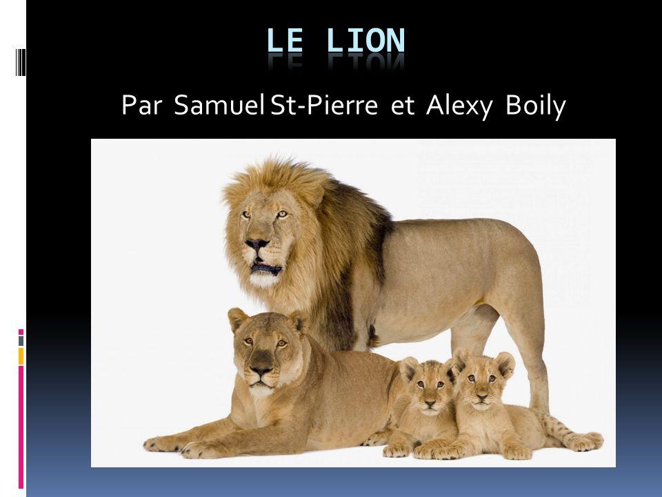 Par Samuel St-Pierre et Alexy Boily