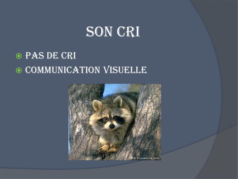 Son cri Pas de cri Communication visuelle