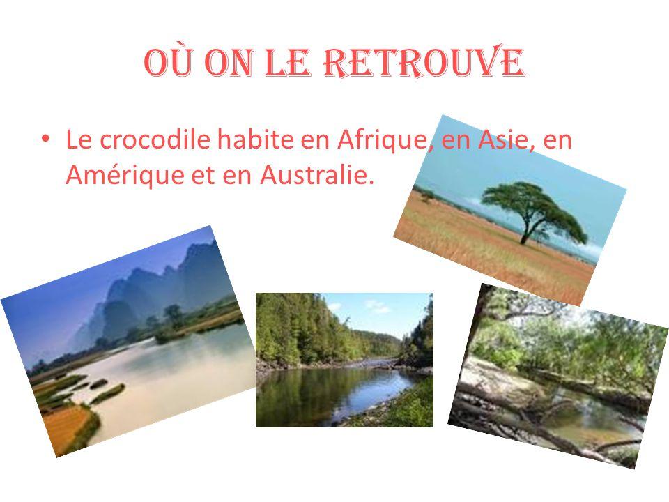 Où on le retrouve Le crocodile habite en Afrique, en Asie, en Amérique et en Australie.