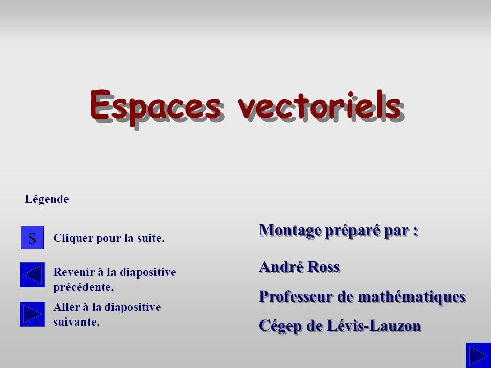 Espaces vectoriels Montage préparé par : S André Ross