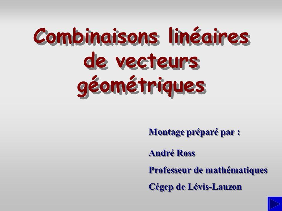 Combinaisons linéaires de vecteurs géométriques