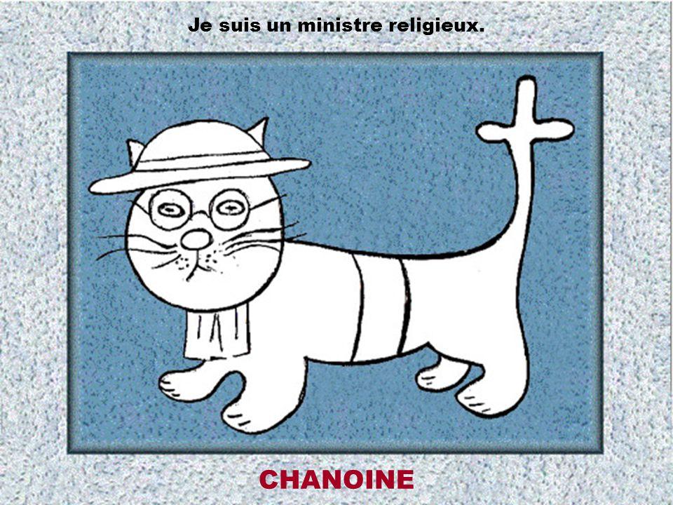 Je suis un ministre religieux.
