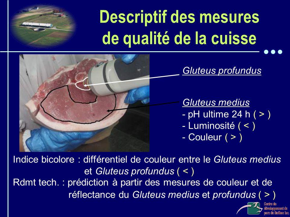 Descriptif des mesures de qualité de la cuisse