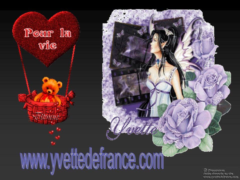 www.yvettedefrance.com