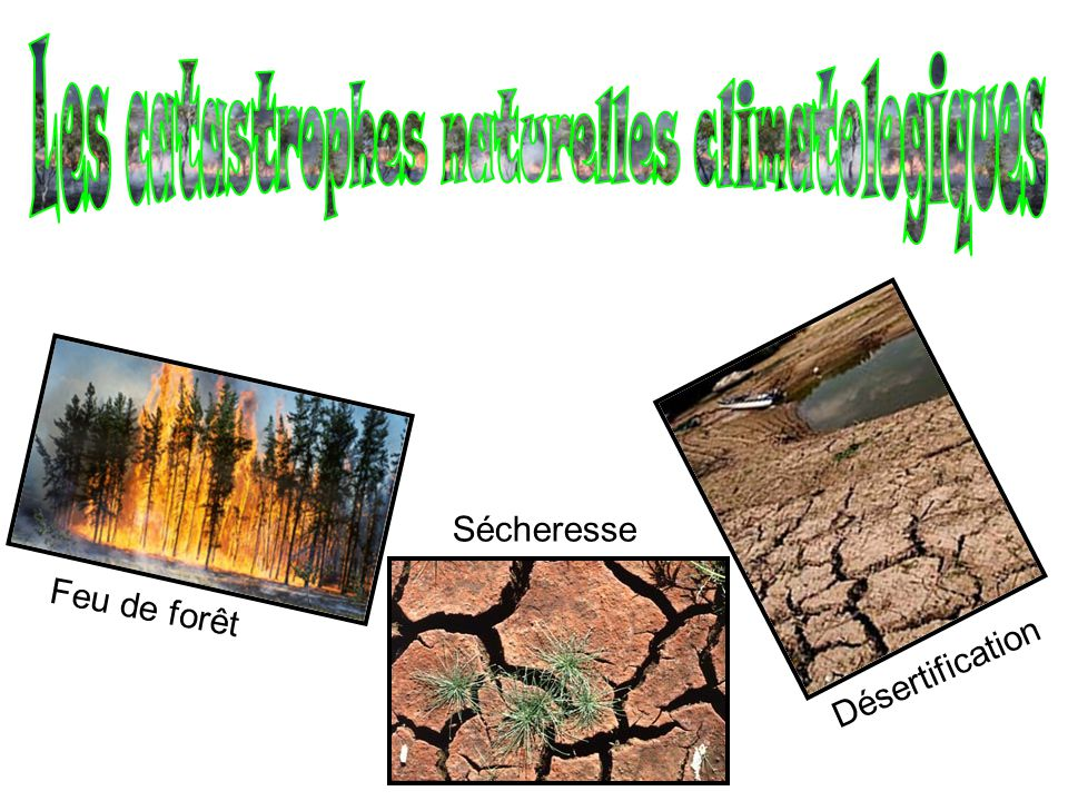 Les catastrophes naturelles climatologiques