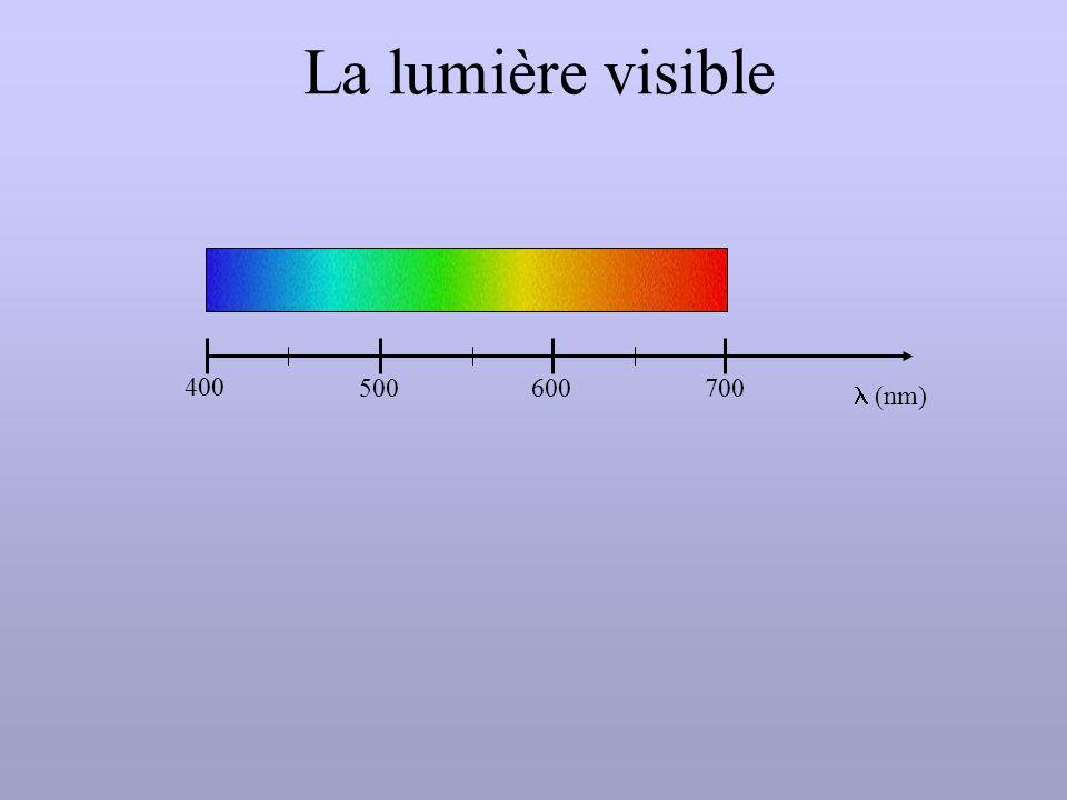 La lumière visible l (nm) 400 500 600 700