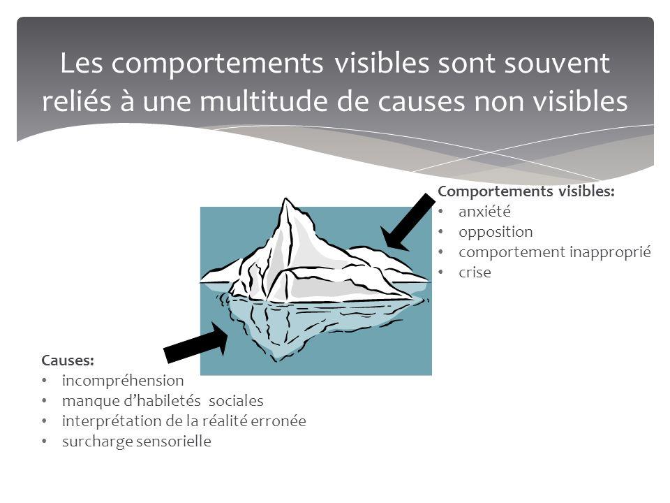Les comportements visibles sont souvent reliés à une multitude de causes non visibles