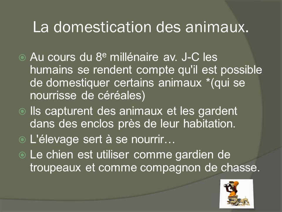 La domestication des animaux.