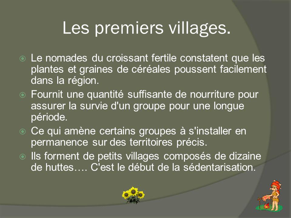 Les premiers villages. Le nomades du croissant fertile constatent que les plantes et graines de céréales poussent facilement dans la région.
