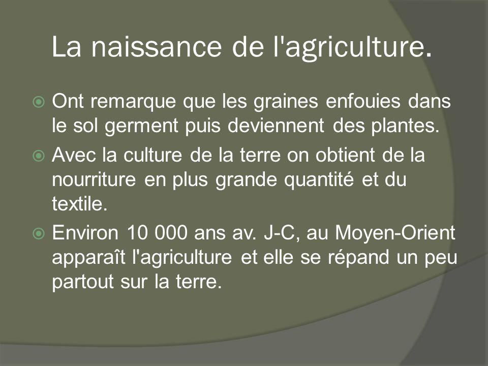 La naissance de l agriculture.