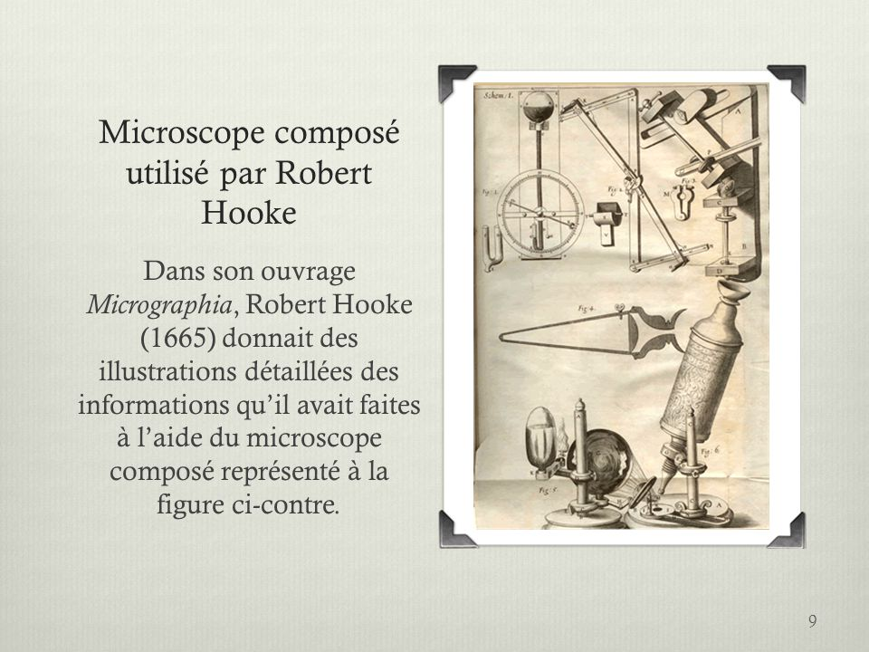 Microscope composé utilisé par Robert Hooke