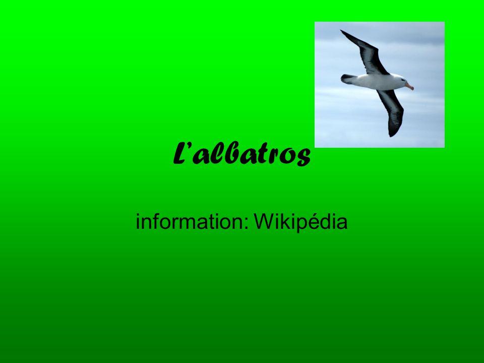 information: Wikipédia