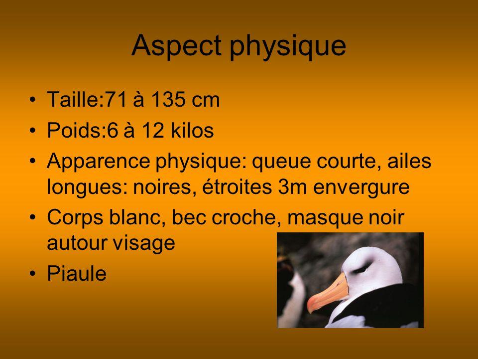 Aspect physique Taille:71 à 135 cm Poids:6 à 12 kilos