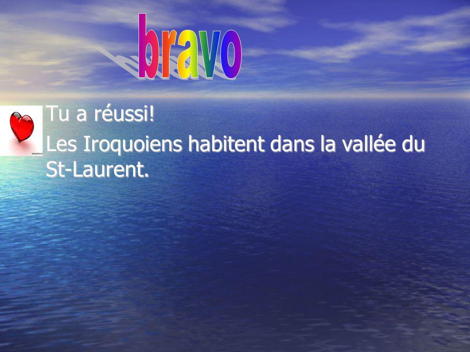 bravo Tu a réussi! Les Iroquoiens habitent dans la vallée du St-Laurent.