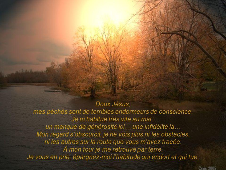 Doux Jésus, mes péchés sont de terribles endormeurs de conscience