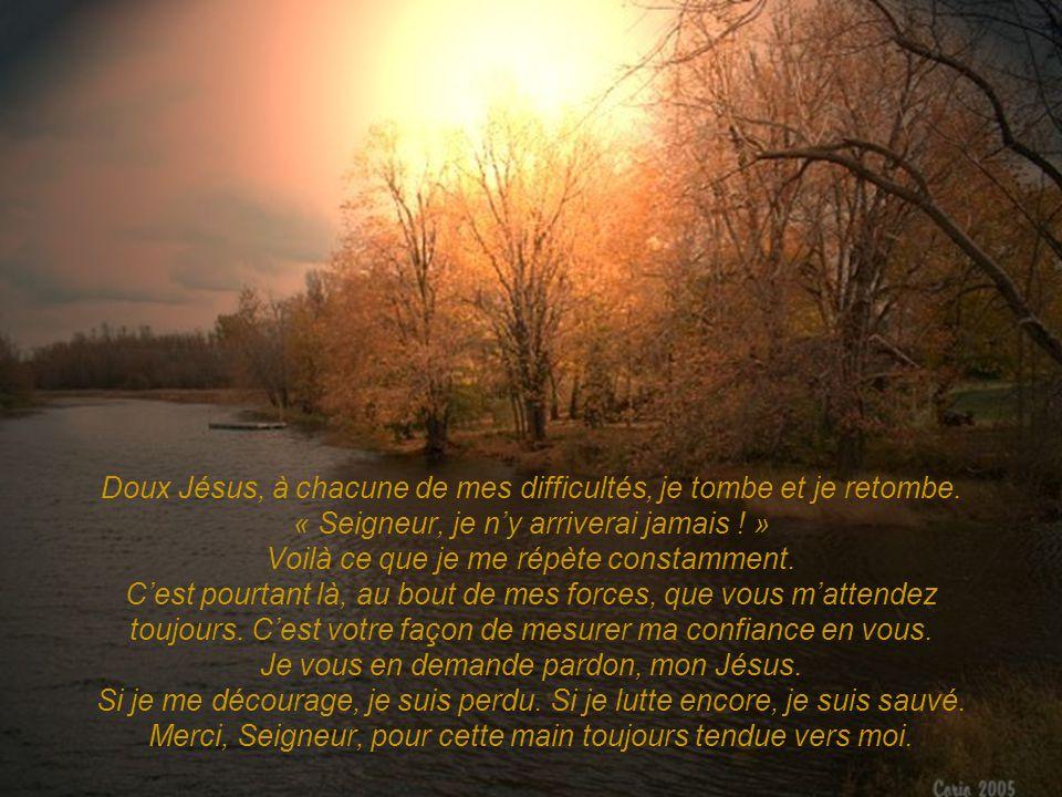 Doux Jésus, à chacune de mes difficultés, je tombe et je retombe