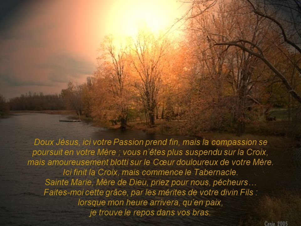 Doux Jésus, ici votre Passion prend fin, mais la compassion se poursuit en votre Mère ; vous n'êtes plus suspendu sur la Croix, mais amoureusement blotti sur le Cœur douloureux de votre Mère.