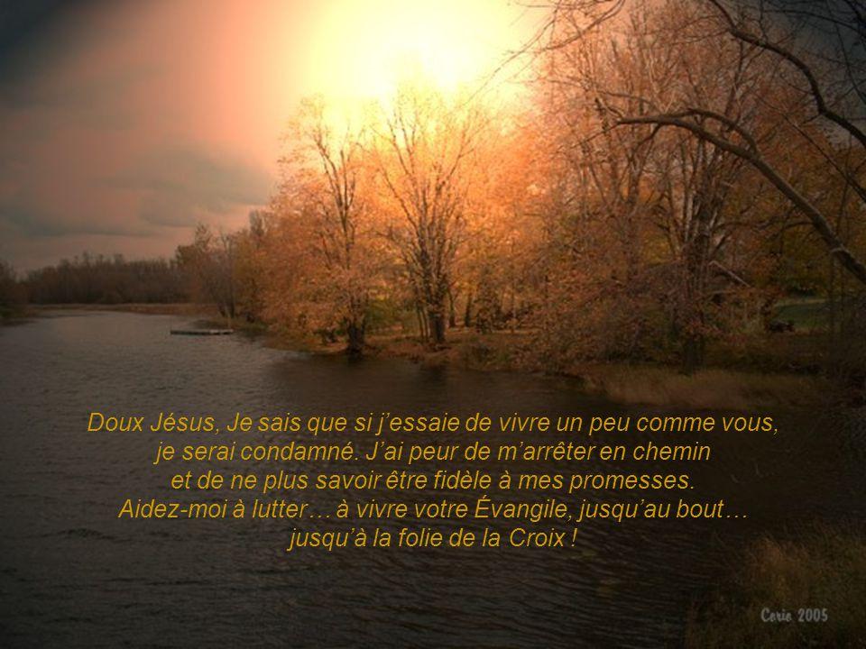 Doux Jésus, Je sais que si j'essaie de vivre un peu comme vous, je serai condamné.