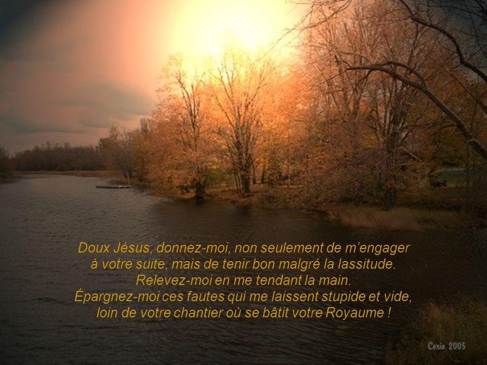 Doux Jésus, donnez-moi, non seulement de m'engager à votre suite, mais de tenir bon malgré la lassitude.