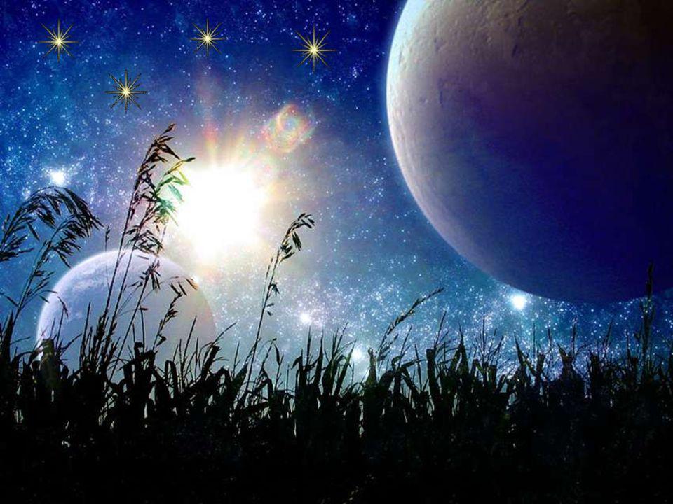 D autres vont admirer le ciel et les étoiles scintiller,
