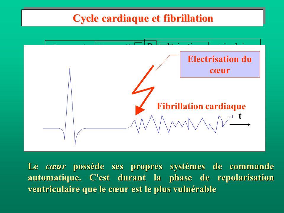 Cycle cardiaque et fibrillation