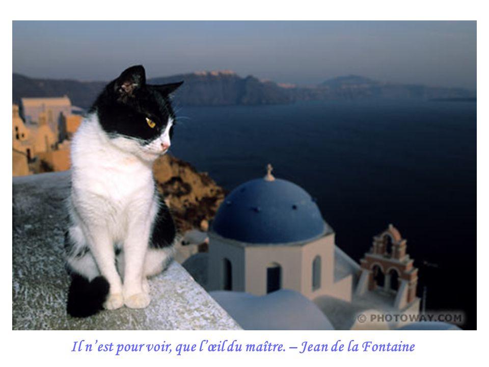 Il n'est pour voir, que l'œil du maître. – Jean de la Fontaine