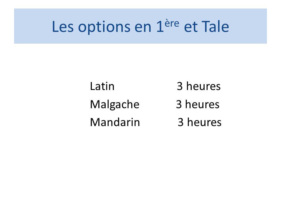 Les options en 1ère et Tale