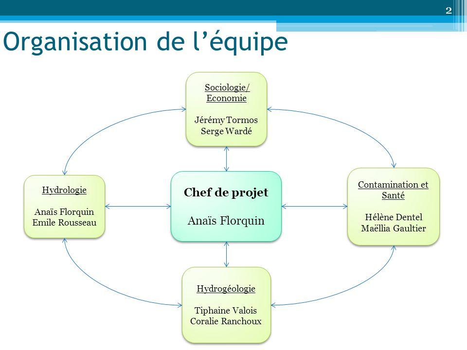 Organisation de l'équipe