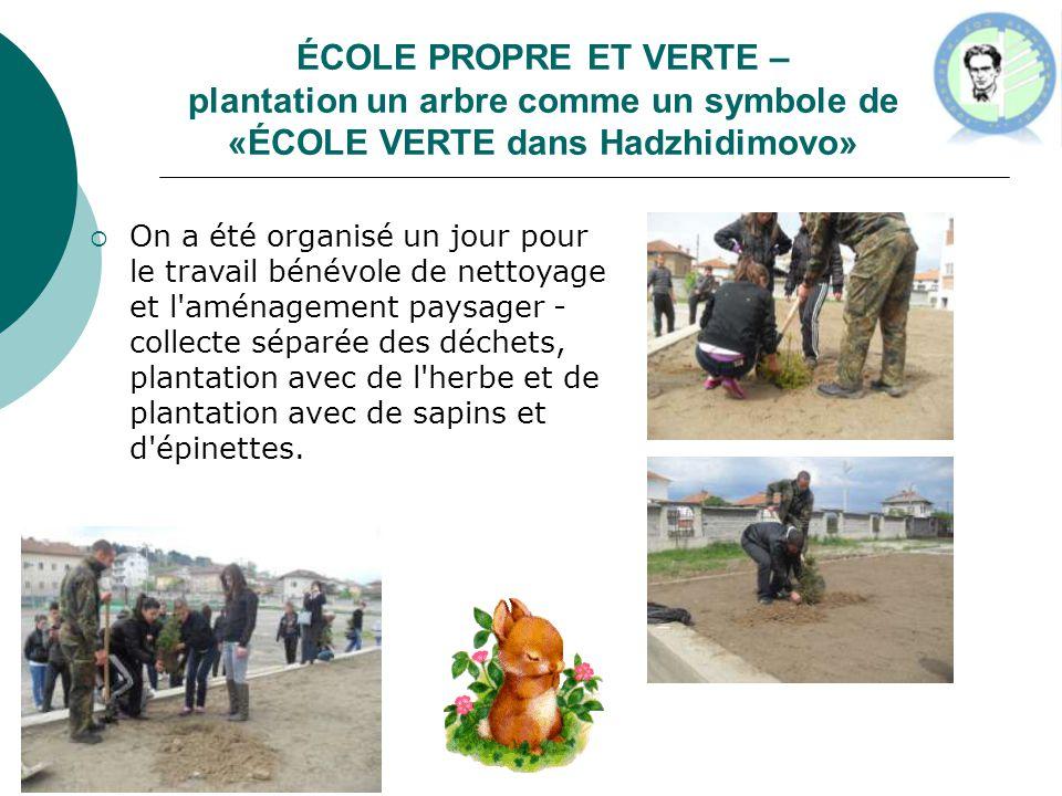 ÉCOLE PROPRE ET VERTE – plantation un arbre comme un symbole de «ÉCOLE VERTE dans Hadzhidimovo»