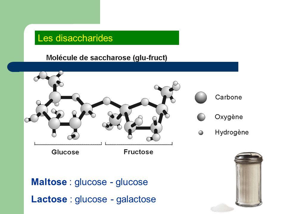 Les disaccharides Maltose : glucose - glucose Lactose : glucose - galactose
