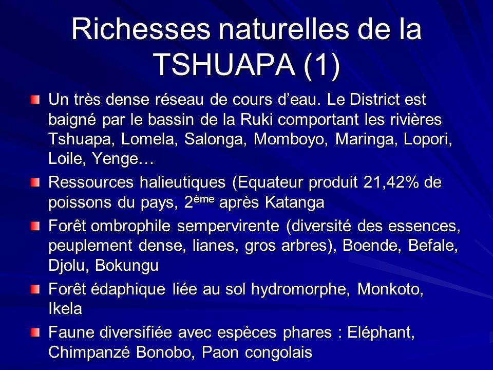Richesses naturelles de la TSHUAPA (1)